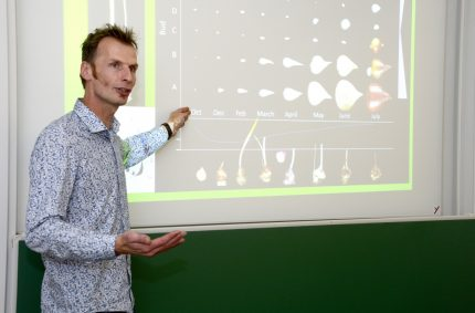 'Bollenprofessor' vijf jaar sierteeltbreed